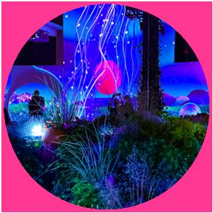 Magenta Moon – Das interaktive Bildungsabenteuer